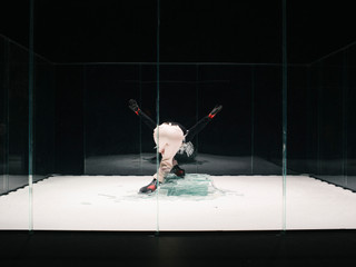 Ice Skates And Other Cruelties - Camille Paycha