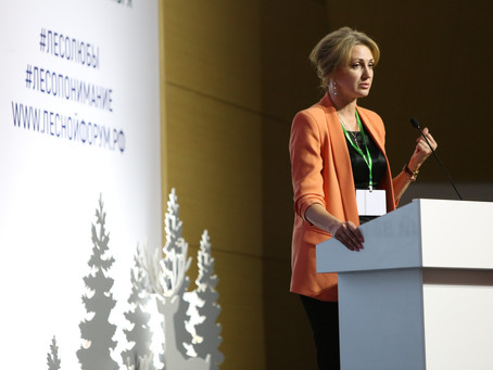 Проблемы взаимодействия бизнеса и заповедников обсудили на лесном форуме в Красноярске