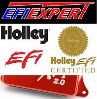 efi_expert_logo_600pix-3.jpg