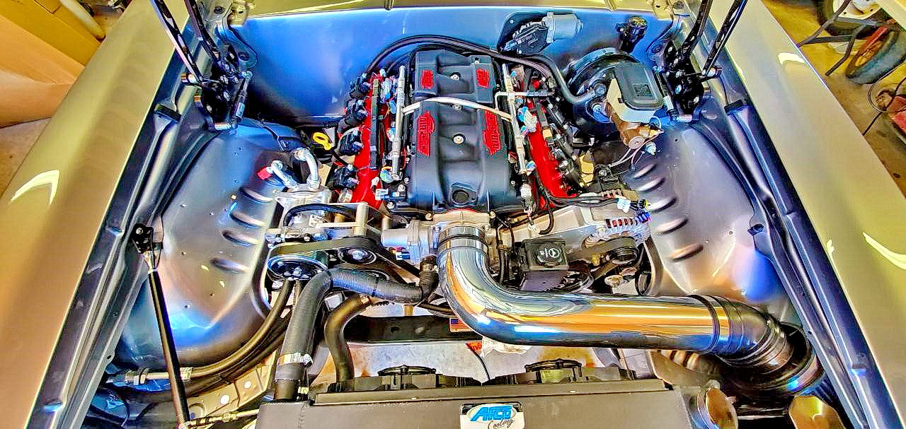 LS2 with Holley EFI