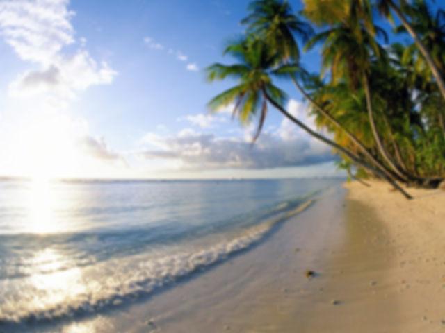Blauwe Oceaan - Terug Naar De Toekomst