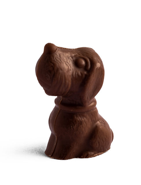 animal chocolate, dog chocolate, history of teuscher, best chocolate in Abu Dhabi, luxury chocolate, top chocolate brands in Abu Dhabi, expensive chocolate, swiss chocolate, godiva, laderach, sprungli, la maison du chocolat, best choco, premium chocolate, cafe in abu dhabi, teuscher abu