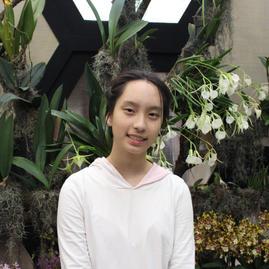 Andrea Tsai