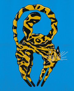 Housecat 1