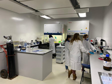 Setting up mulberry experiments in the laboratory