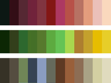 Colour spectrum of mulberry trees
