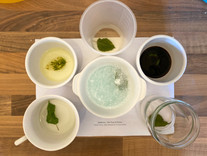 A kitchen lab set up for 'ghosting' mulberry leaves