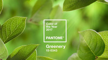 2017 Color of the Year ... Greenery