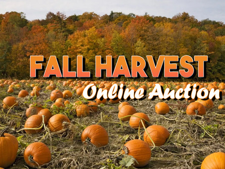 Our Fall Harvest Auction Goes Online