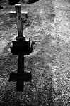 grave photo.jpg