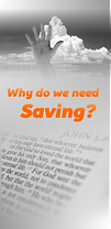 saving cover.png