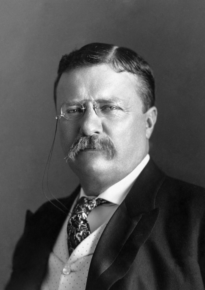 西奧多·羅斯福