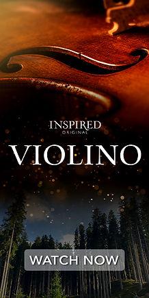 300-600_Violino-n.jpg