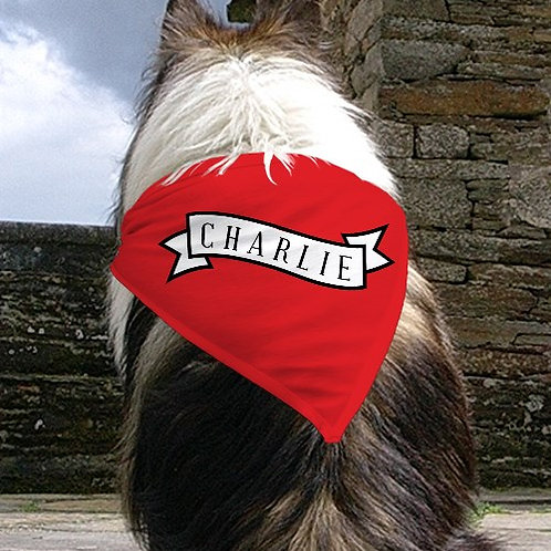 Personalized Banner Pet Bandana