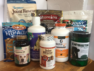 Mountain Wags Newsletter #4:  Supplemental Glucosamine for your Pet