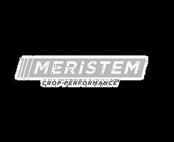meristem_edited