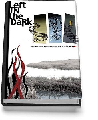Left in the Dark (by John Gordon)