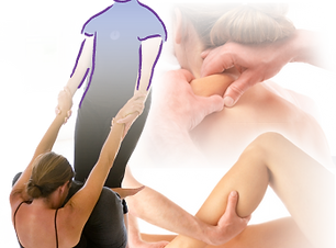 fisioterapia (9).png