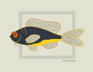 Cicada Fish