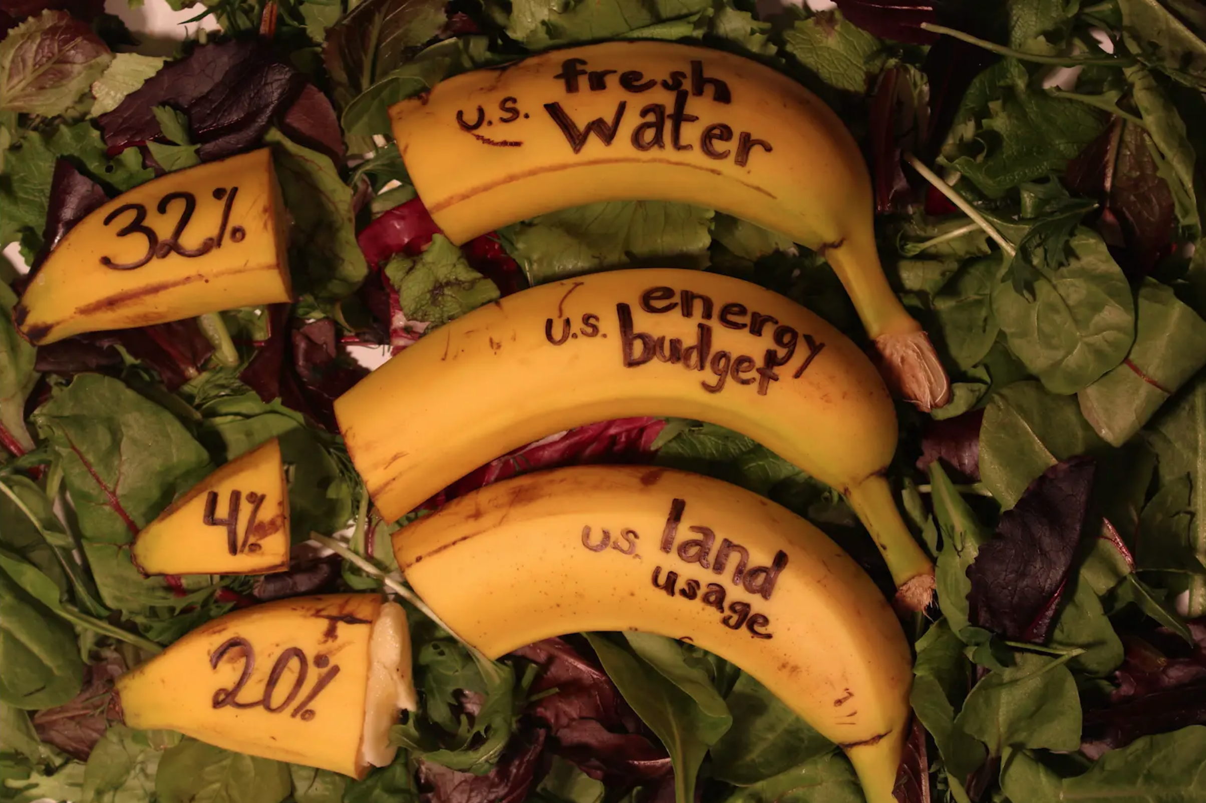 Food Waste Stop-Motion