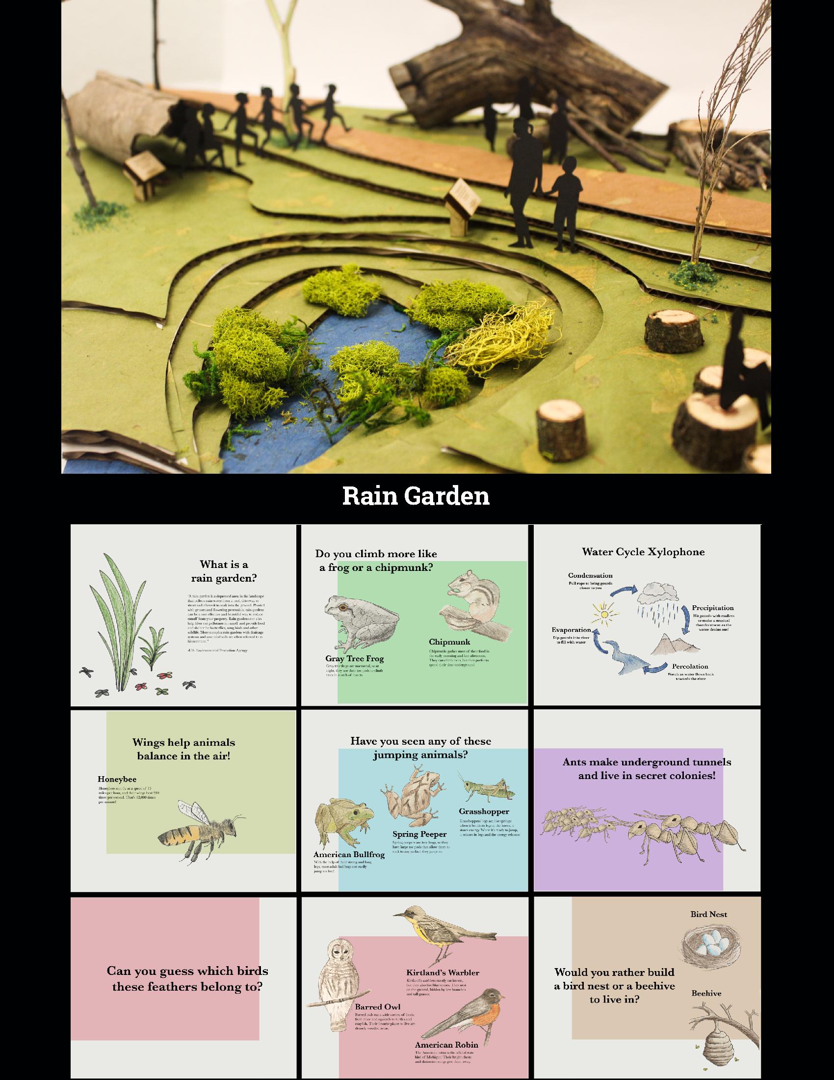 Rain Garden and Signs