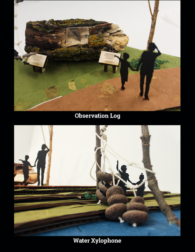 Observation Log and Water Xylophone