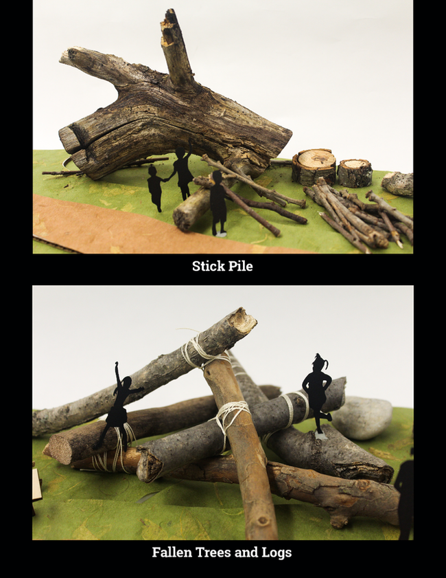 Sticks and Fallen Trees