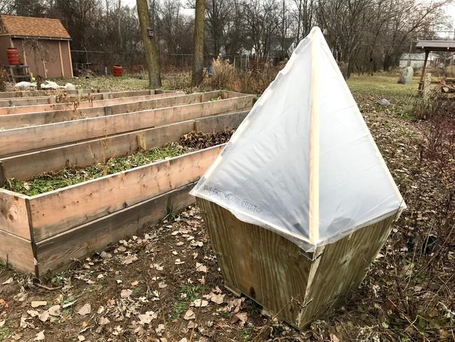 Product in School's Garden