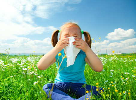 Homeopathy For Seasonal Allergies