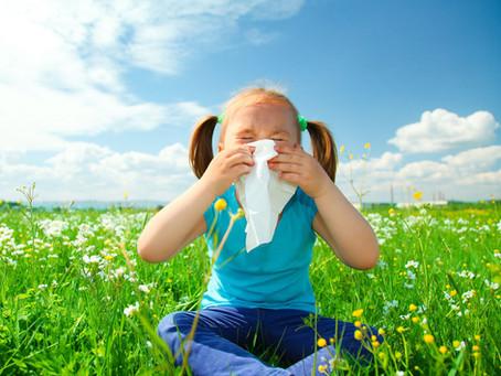 Homeopathy For Seasonal Allergies