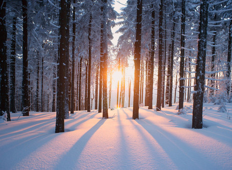 Winter: Effects and Care / Diet Tips