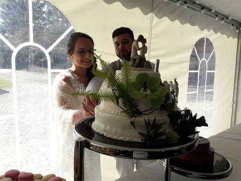 Mariage de Caroline et Fabien - Parc d'Husseren Wesserling - Alsace