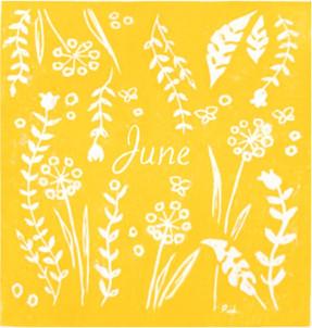 Geboortekaart June