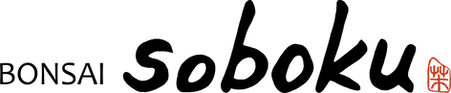 BONSAI Soboku logo.png