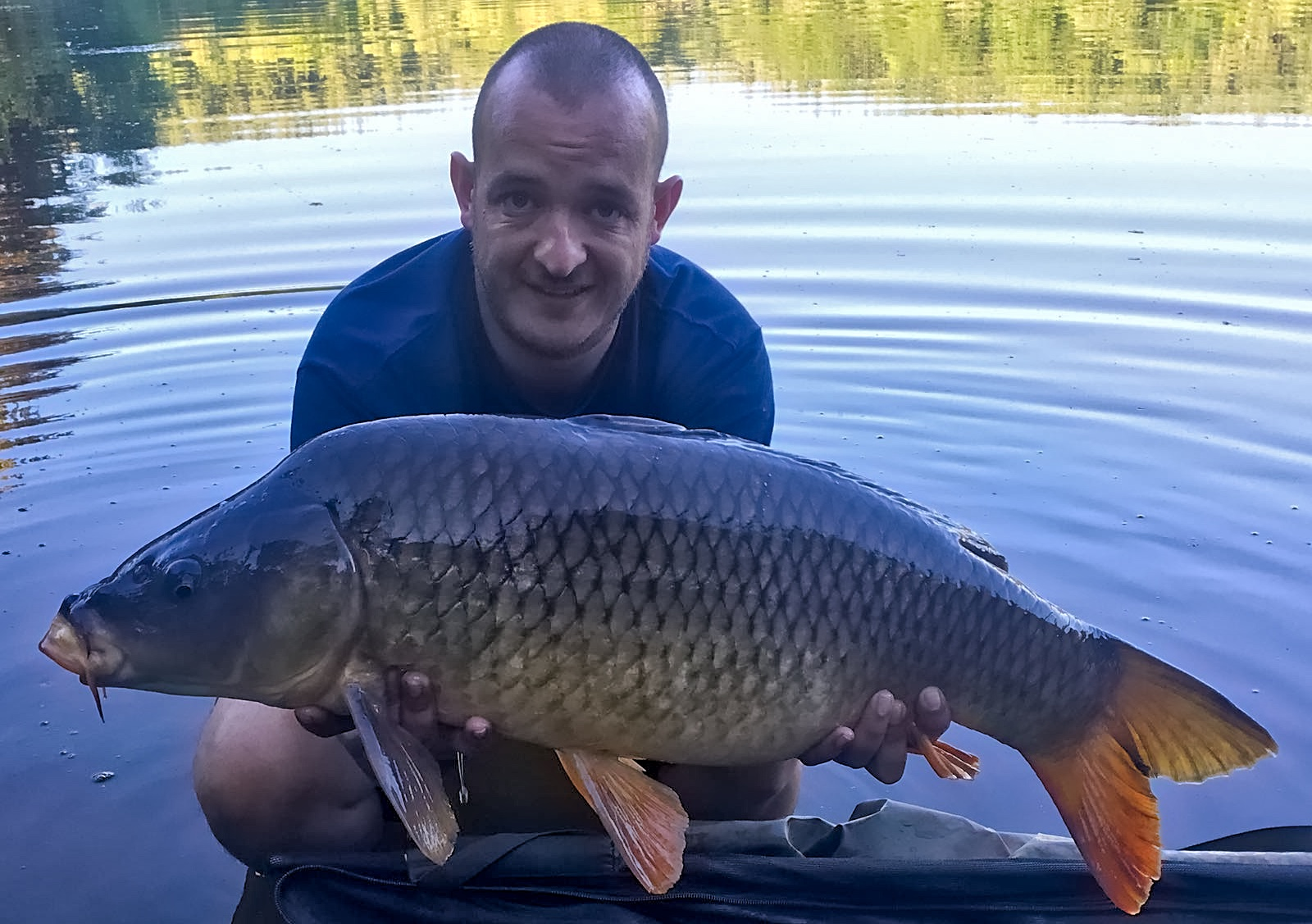 Forest View Carp Fishing Lake
