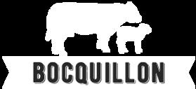 lebocqullon-logo-blanc.png