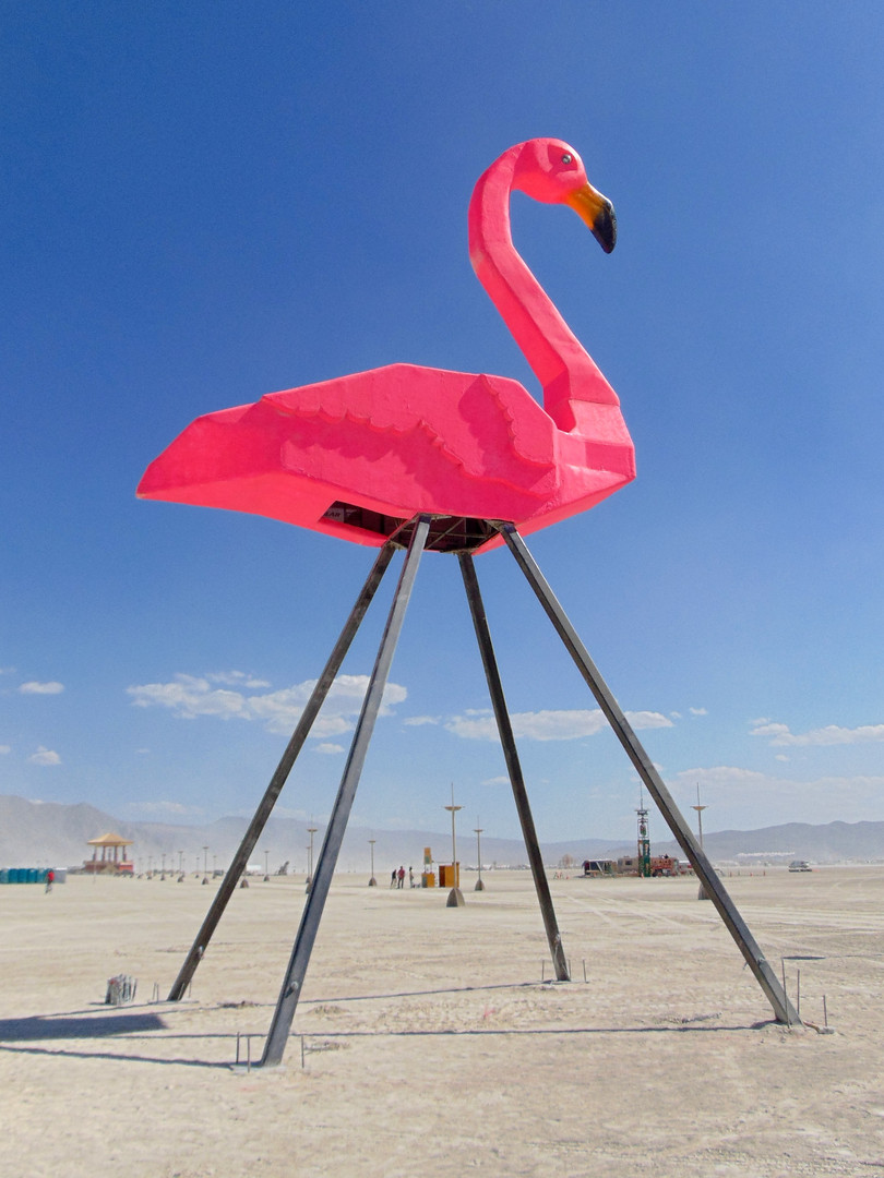 9-Zubkoff-Flamingo.jpg