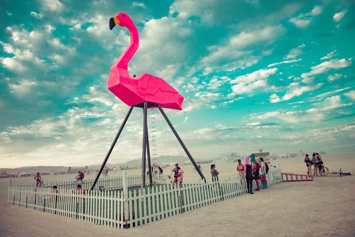 1-Zubkoff-Flamingo-encoded.jpg