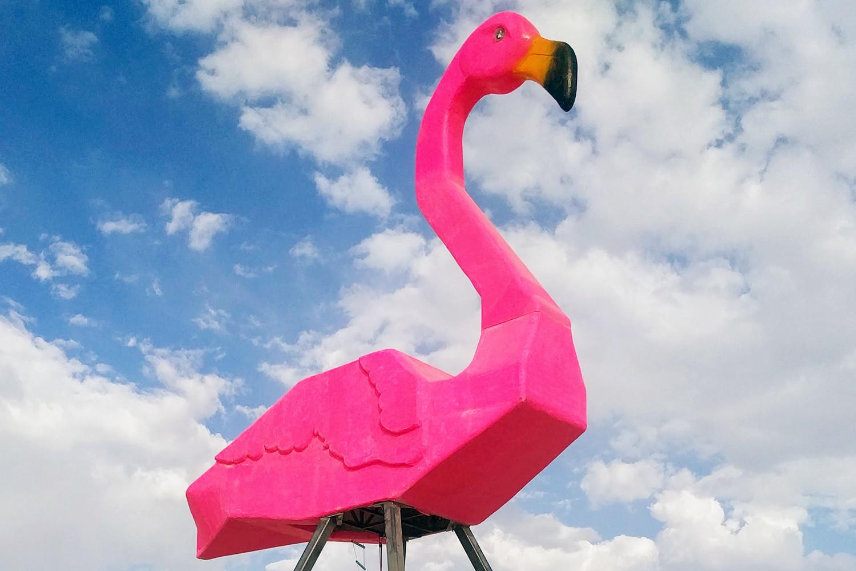 Flamingo-LI.jpg