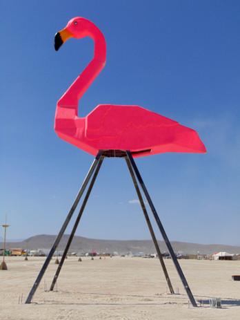 Flamingo-15.jpg