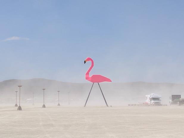 7-Zubkoff-Flamingo.jpg