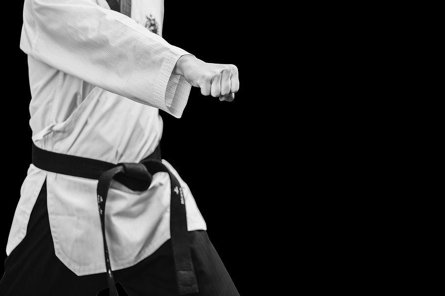 Taekwondo Traditional Korean Male Fighte