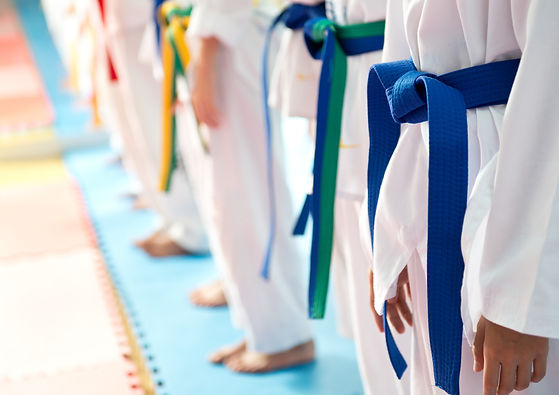 People in martial arts training exercisi