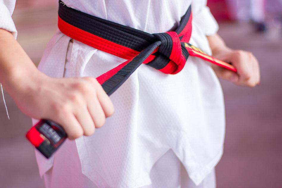 Taekwondo kids Caught The Fighter Rope.j