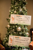 Chicks-With-Cheques-XMAS-Carla-Lehman-Ph