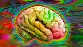 brain-lsd-0d230db.jpg