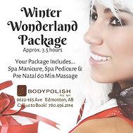 _Winter Wonderland Package NP.jpg