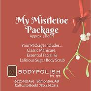 My Mistletoe Package NP.jpg