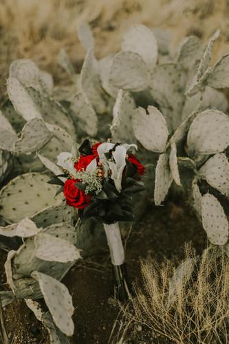 Weddings in El Paso, Texas