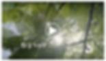 數想支點計畫-雙龍影片縮圖.png
